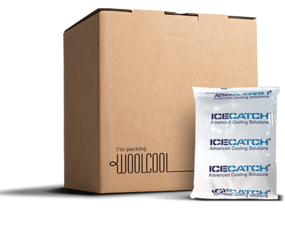 Ice packs for thermal boxes and thermal bags